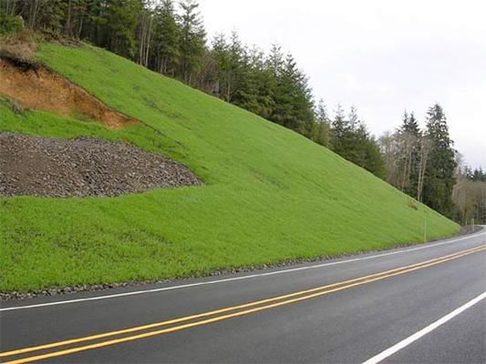 erosion-control-terraseeding