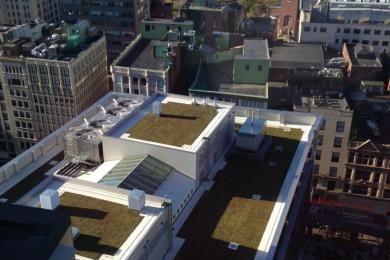 Filenes Basement Green Rooftop Install