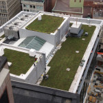 Green Rooftop Install